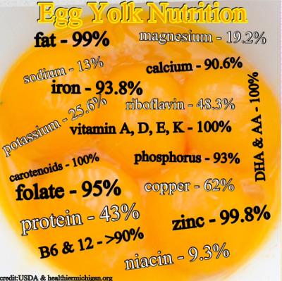 Homemade Egg Custard