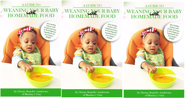 the baby weaning guide cover
